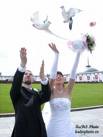 Свадебные фото - Герман и Юлия
